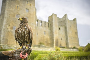 Bolton Castle (2)