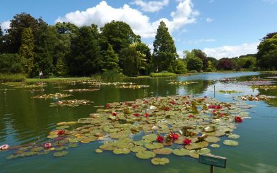 Burnby Hall Gardens to Re-Open
