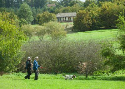 The Yorkshire Arboretum (2)