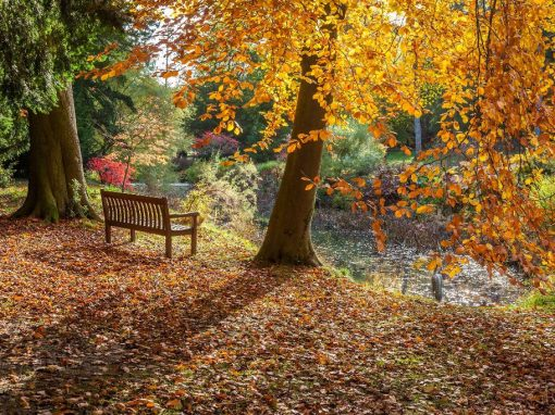 Thorp Perrow, Bedale, North Yorkshire