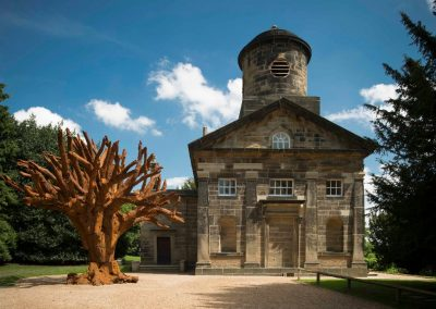 Yorkshire Sculpture Park (1) Ai Weiwei, Iron Tree, 2013. Photo © Jonty Wilde