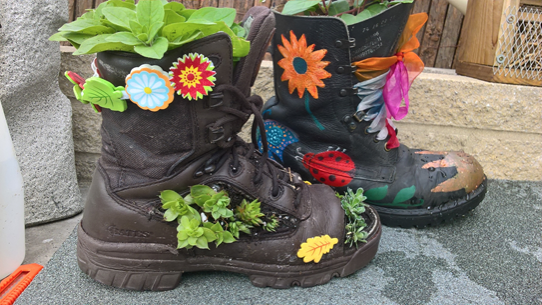 Best Foot Forward for RHS Garden  Harlow Carr Flower Show