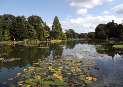 Burnby Hall Gardens - Photograph by Peter Rogers (106)