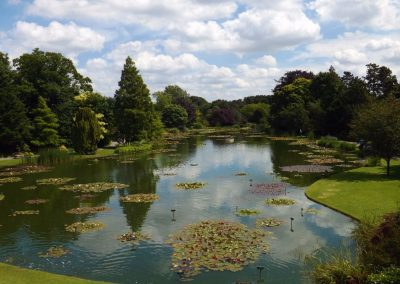 Burnby Hall Gardens - Photograph by Peter Rogers (6)