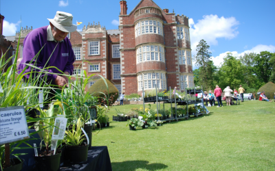 Be inspired at Burton Agnes Hall's Gardeners' Fair