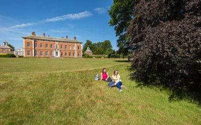 Experience the Magic of Trees at Beningbrough