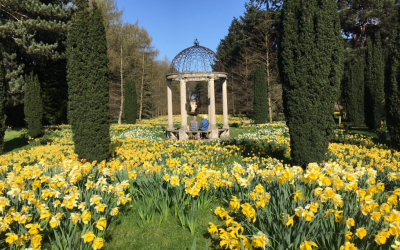 Step into Spring at Thorp Perrow