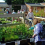 Scampston's Plant Nursery Opens